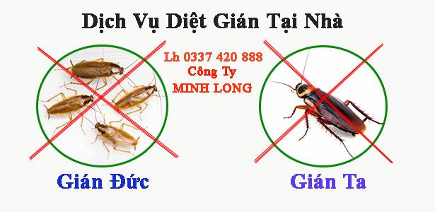 diệt côn trùng tại bình dương