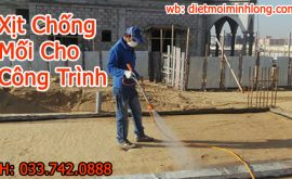 chống mối công trình xây dựng